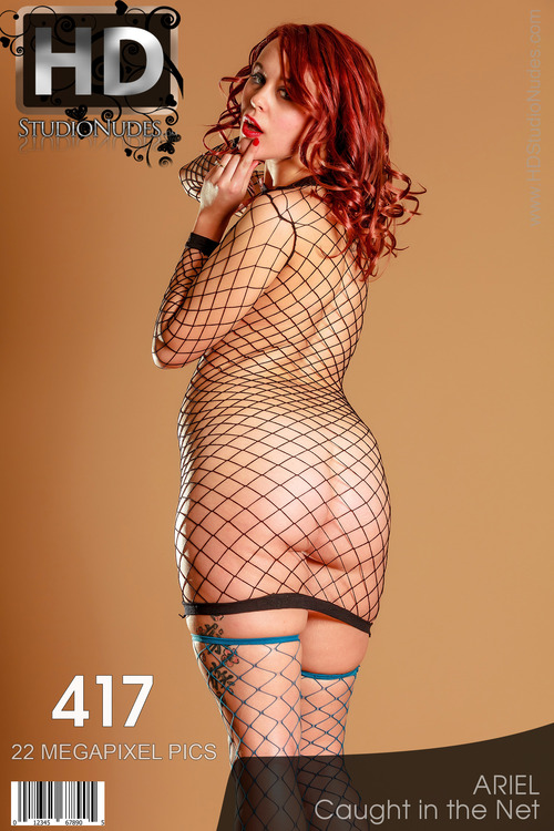 FREE PREVIEW Ariel Caught in the Net